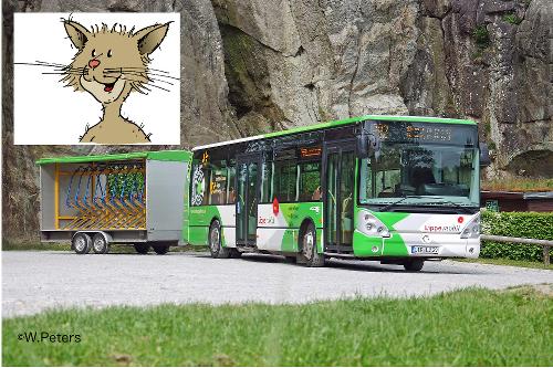 Naturparkbus
